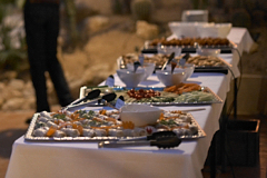 Partycatering - Asiatisches Buffet - Home Cooking